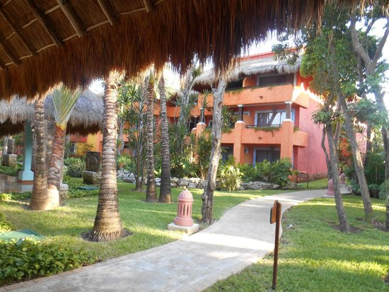 Iberostar Tucan Hotel : One of the buildings