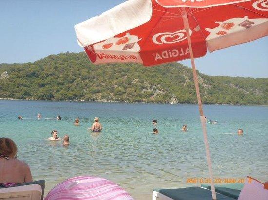 Taner Hotel: sea horse beach