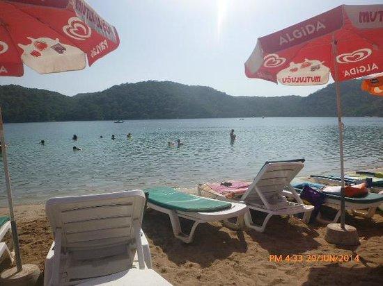 Taner Hotel: sea horse beach gorgeous place