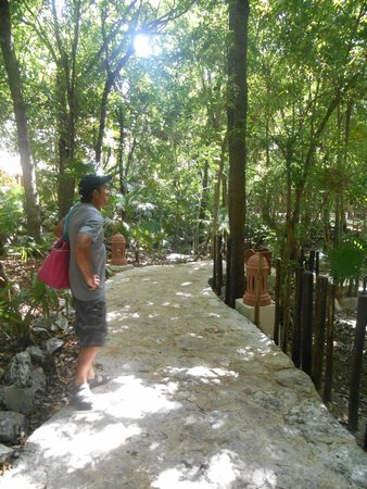 Iberostar Tucan Hotel: Jungle trail to the pool