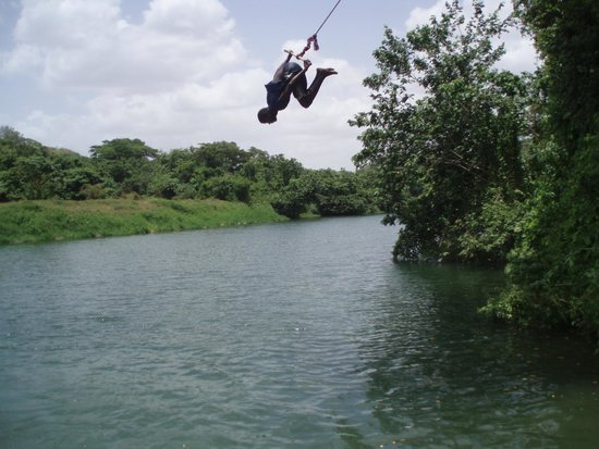 SeavisTours : Diving from the swing