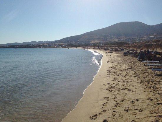 Poseidon of Paros : golden beach