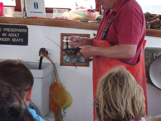 Finestkind Scenic Cruises : Capt Tom Measuring Lobster