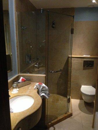 Iberostar Bavaro Suites: Bathroom shower area