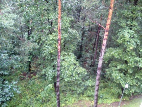 Four Points by Sheraton Ljubljana Mons : view