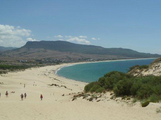Hostal La Hormiga Voladora: Desde la duna de Bolonia