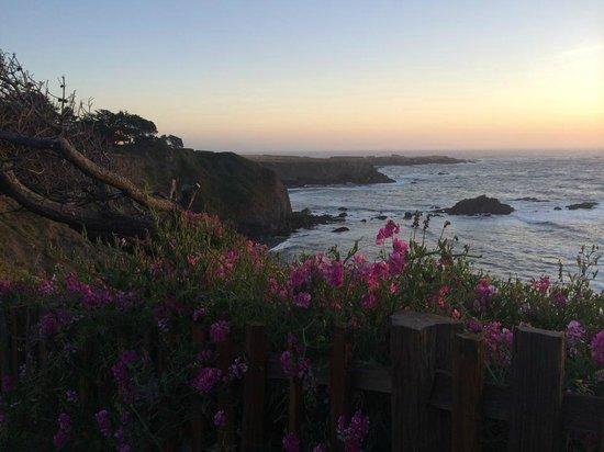 Sea Rock Inn: View of the ocean