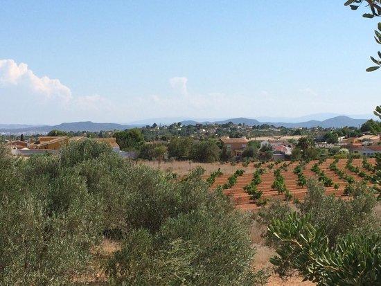 Valencia con Anna: Настоящая природа Валенсии
