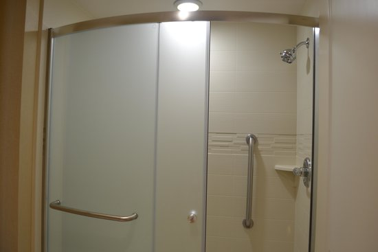 Homewood Suites by Hilton Charlotte Ballantyne Area: Bathroom Shower