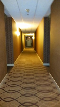 Sheraton Suites Wilmington Downtown Hotel : The hallway to the room