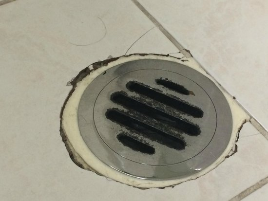 The Sebel Quay West Auckland: Dirty broken drain in bathroom, with hair