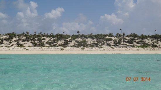 Coastline Adventures Exuma: where we ate th conch salad