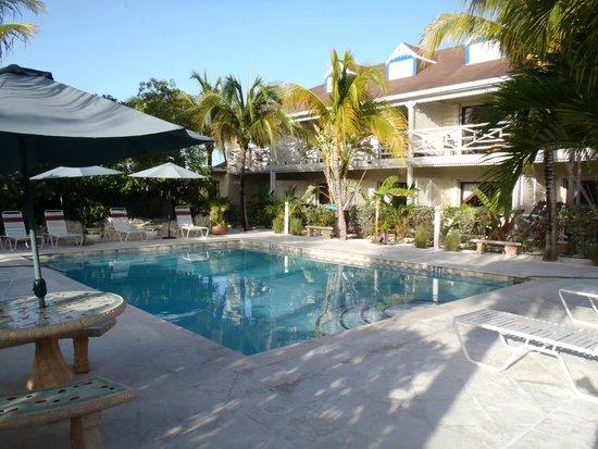 Caribbean Paradise Inn: Pool area, rooms not too close.