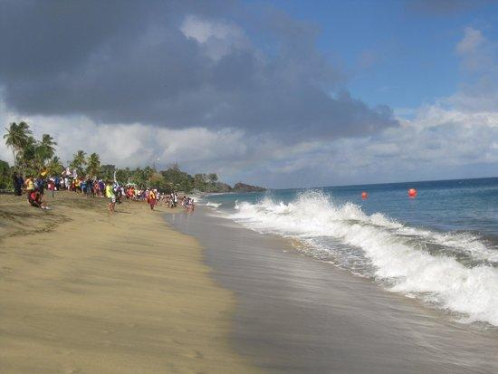 Turtle Beach by Rex Resorts: beautiful