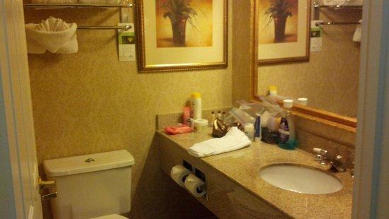 Wingate By Wyndham Dallas / Las Colinas: Bathroom