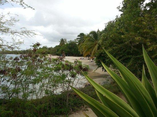 Pierre & Vacances Village Club Sainte Luce : Vue de la plage