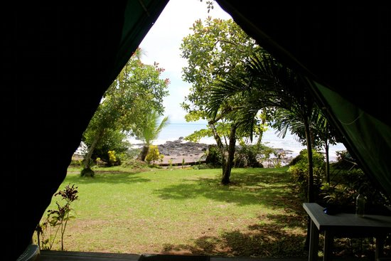 Corcovado Adventures Tent Camp: View from our tent