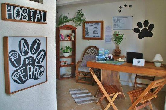 Hostal & Suites Pata de Perro: Reception