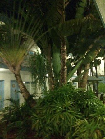 Aqua Hotel and Suites: 1er piso acceso a habitaciones