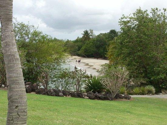 Pierre & Vacances Village Club Sainte Luce : Une jolie vue de la plage