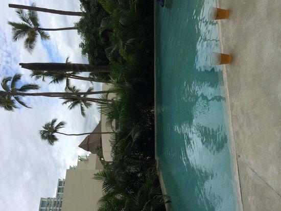 Hilton Puerto Vallarta Resort: Private pool of room 114