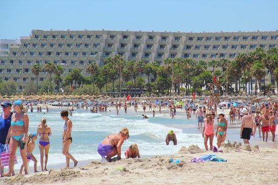 Appartamentos Club Sa Coma : Beach Sa Coma