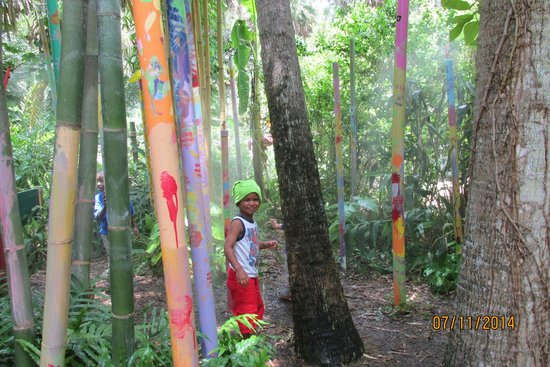 The Children's Garden: Rain Forrest (misting)