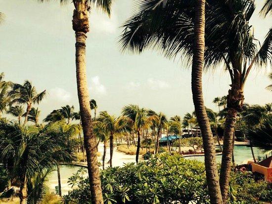 Hilton Aruba Caribbean Resort & Casino: Vista desde la habitacion