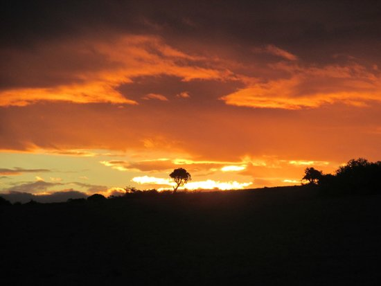 Shamwari Game Reserve Lodges: Sunset