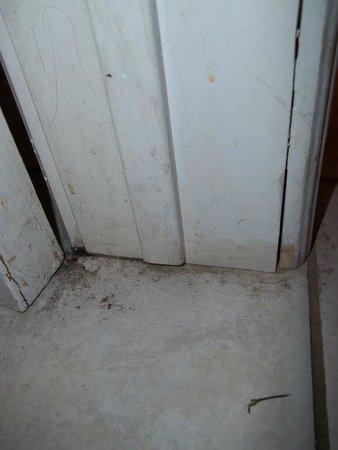 Super 8 Cambridge/Kitchener/Waterloo Area: Room Interior