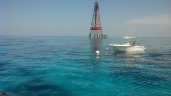Starfish Snorkeling: Perfect trip!