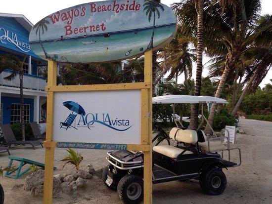 Aqua Vista Beachfront Suites : Bar steps away from hotel. Super convenient.