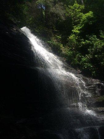 Enota Mountain Retreat : 200 ft waterfall