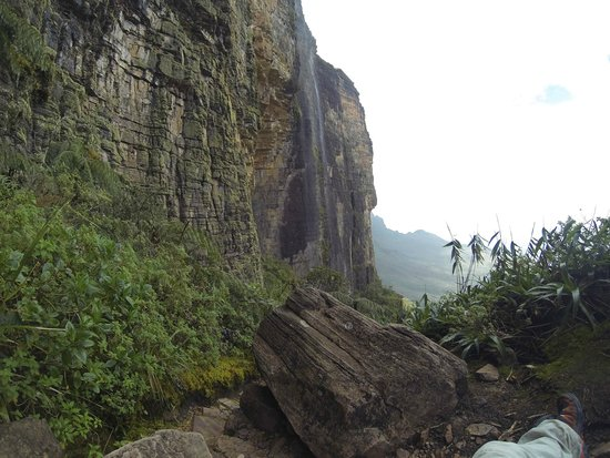 Mount Roraima : Roraima's wall on the way up