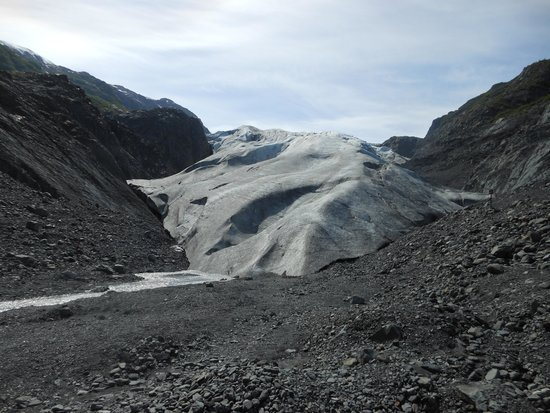 Seavey's IdidaRide Sled Dog Tours : Exit Glacier