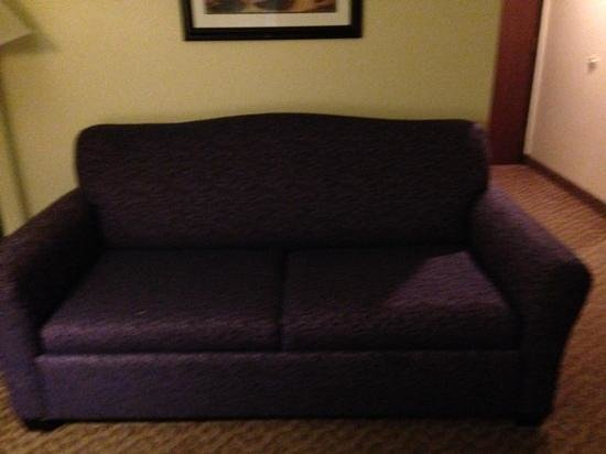Holiday Inn Express Osage Beach - Lake of the Ozarks : old couch. no stains but full of mold smell