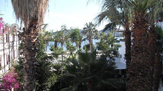 Sami Beach Hotel : Hotel Room View