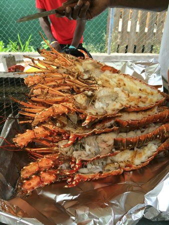 Fireman's Lobster Pit: Now that is a pile of lobster!