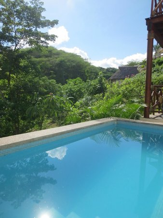 Grand Sirenis Matlali Hills Resort & Spa: View from villa pool and jungle