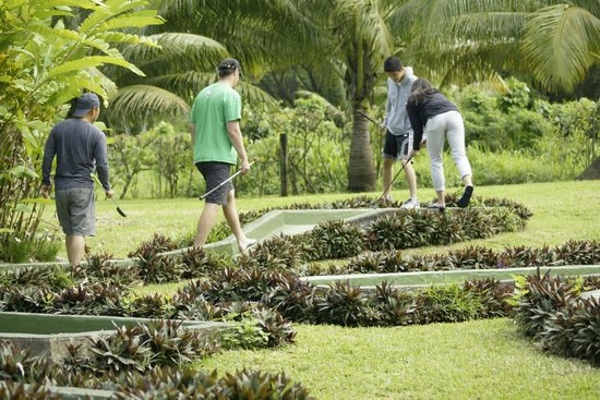 Benjor Beach Club : Port Vila's only mini golf course