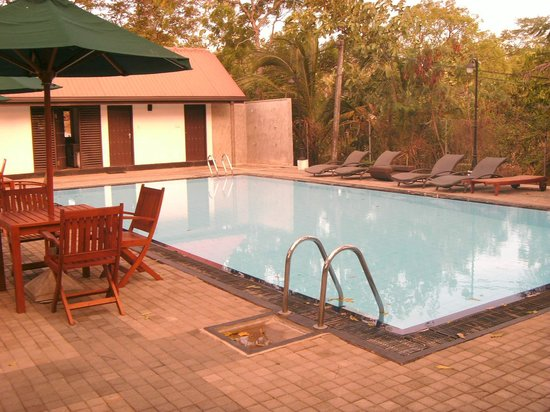 Joe's Habarana Village: swimming pool
