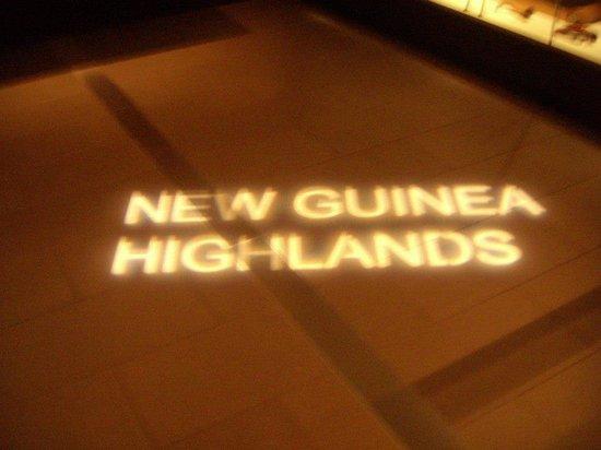 Auckland Museum: New Guinea