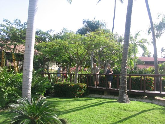 Grand Palladium Punta Cana Resort & Spa : Chambres terrasse