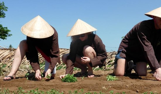 Indochina Odyssey Tours - Day Tours: Family getting their hands dirty on the farm