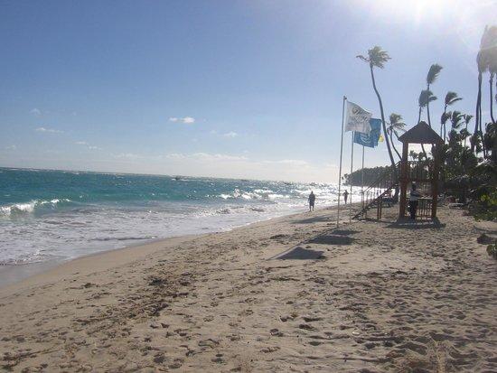Grand Palladium Punta Cana Resort & Spa : Plage