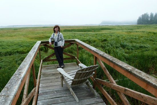 Shelburne Inn: My wife enjoying the birds and views at China Beach