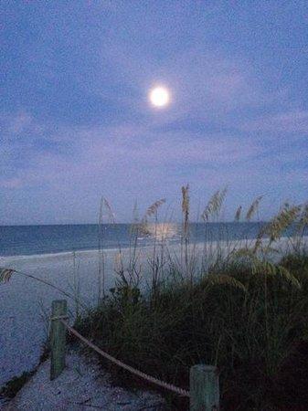 West Wind Inn : full moon setting 630am