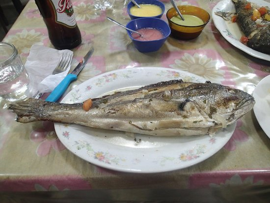 El Zorrito: My dish