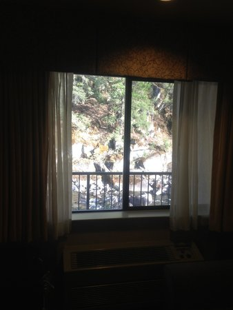 Yosemite View Lodge : Vue de la chambre