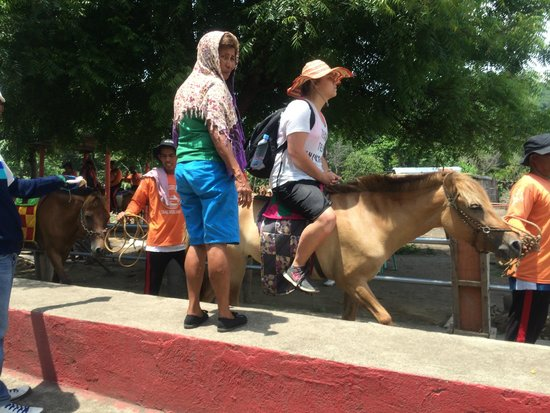 Taal Volcano: Mount up on the ponies.  Larger people have to walk.